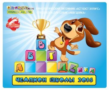 champion_abc_16
