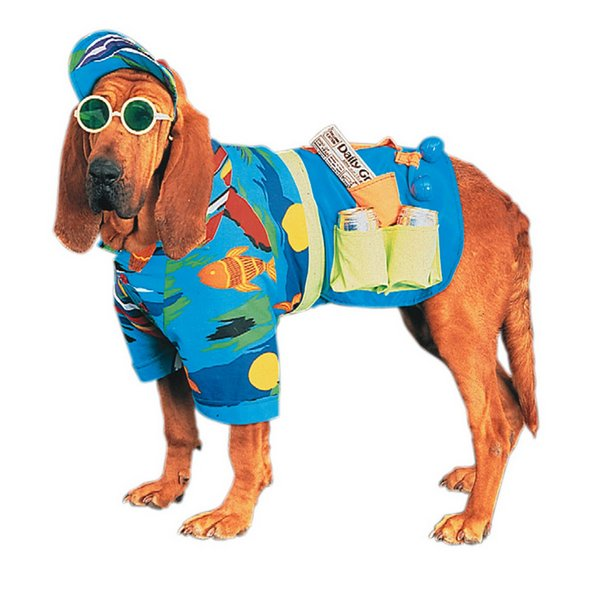 1281169652_dog-costume-3.jpg