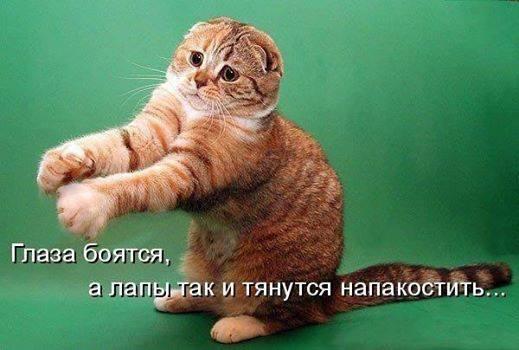 NAJOuk_XFdc.jpg