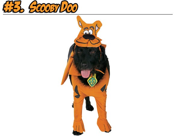 dogscooby.jpg