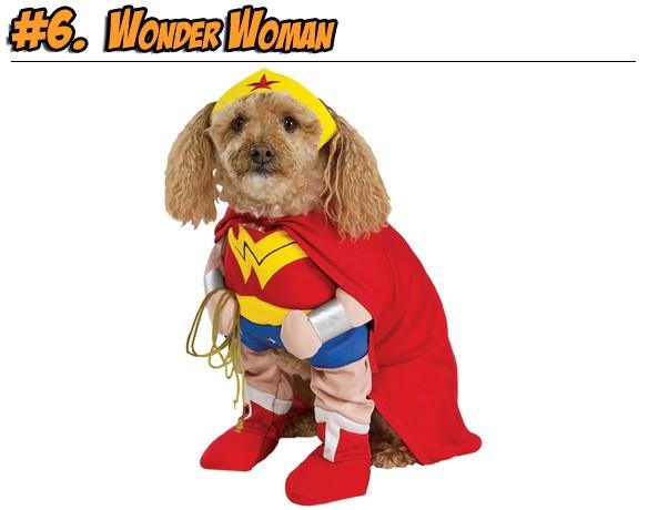 dogwonderwoman.jpg