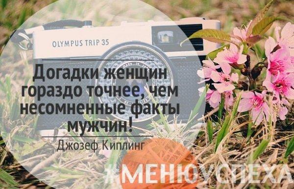 eJPmD5CLCJs.jpg