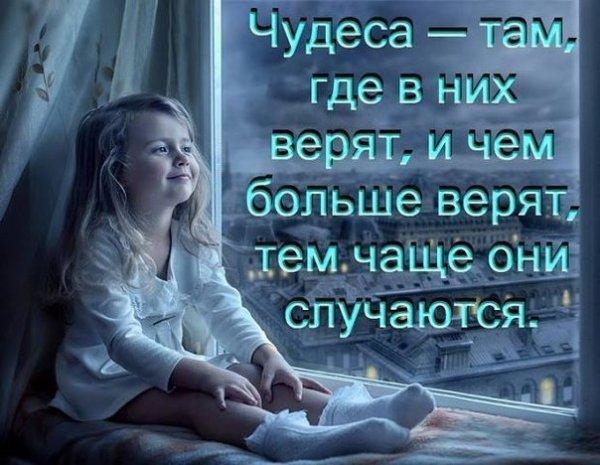 pOWGdebh8Nk.jpg